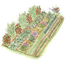 vegee garden
