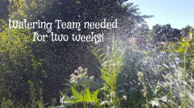 watering team
